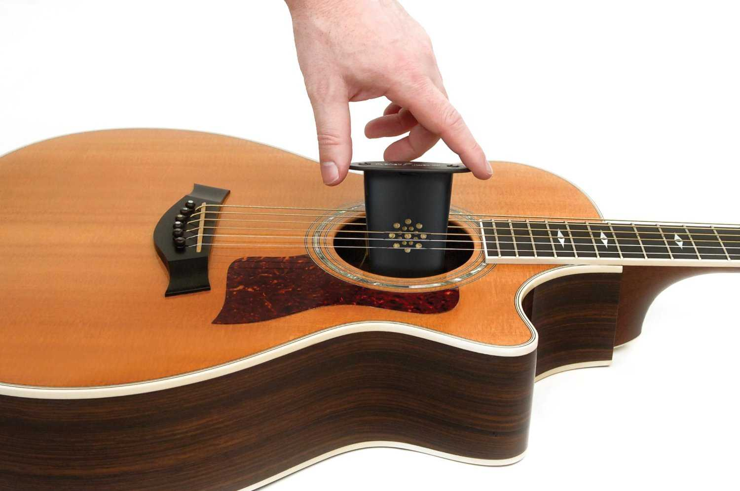 D'Addario One-Way Acoustic Guitar Humidifier